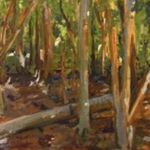 Oil painting using browns and greens
