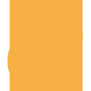 Orange Stethoscope and Red Cross Icon