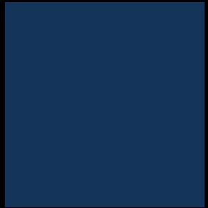 Blue paw icon
