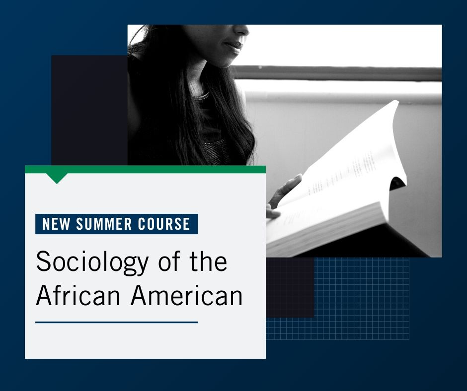 New Course Sociology of the African American