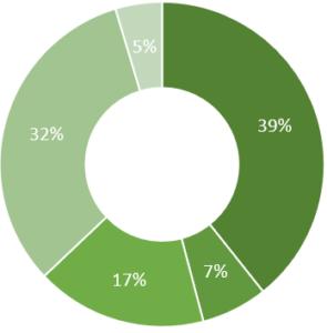 Revenue Pie Chart 2020