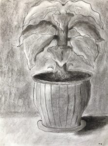 Tom Kokernak 3, Drawing 1