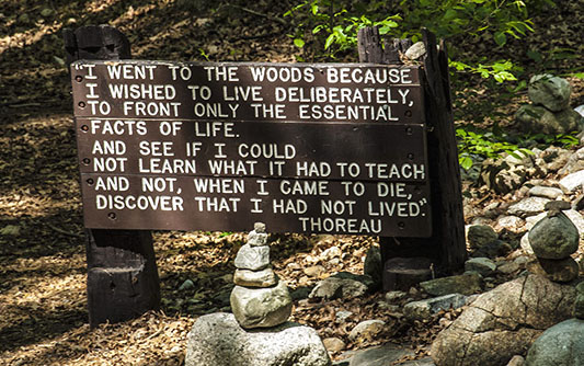 "Sign on the trail in the woods that says ""I went to the woods because I wished to live deliberately, to front only the essential facts of life. And see if I could not learn what it had to teach and no, when I came to die, discover that I had not lived."" - Thoreau"