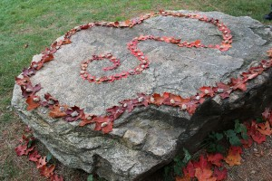 Large rock with red leaves making an artistic pattern on top