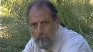 Tony Cherubini